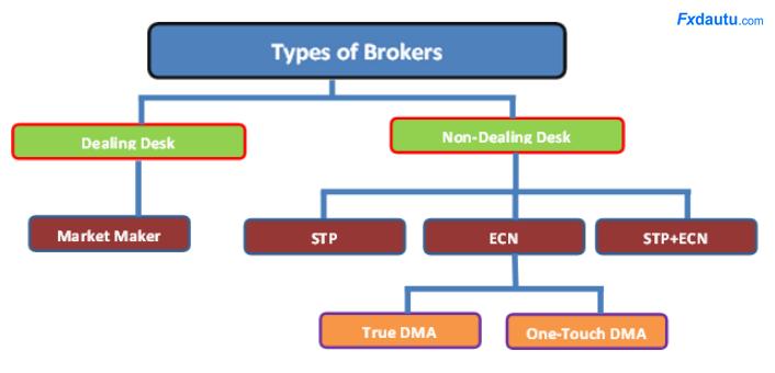 loại-forex-broker