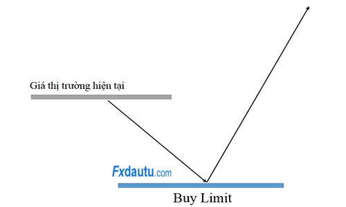 buy-limit-la-gì