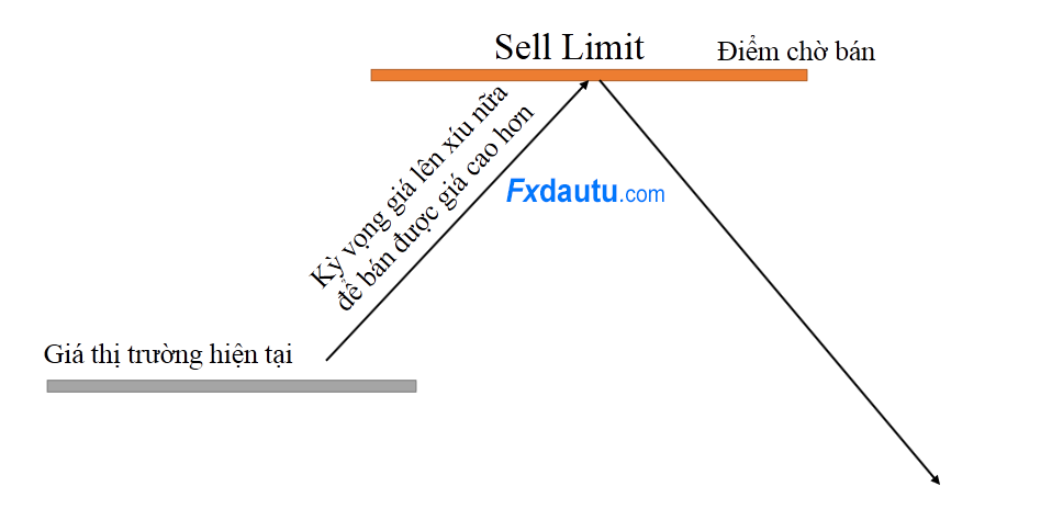 sell-limit-la-gi