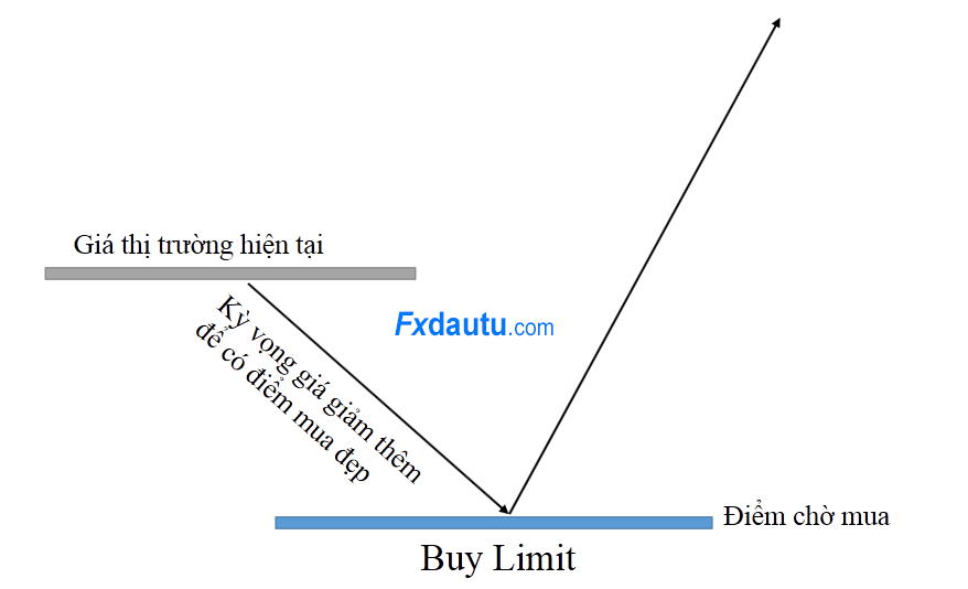 y-nghia-cua-buy-limit-la-gi